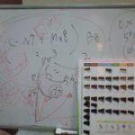 カラー講習!!