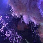 話題の『FLOWERS by NAKED』